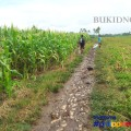 Bukidnon   Chasing Laligan Water Falls   Top Places To See In Bukidnon