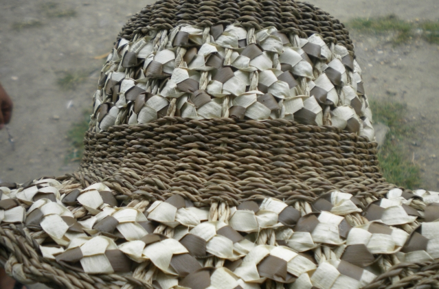 Abaca is indigenous to the Philippines. Abaca fibers were already being woven into breathable fabrics and made into sturdy sandals in different parts of the Philippines long before the Spaniards came to the Philippines in 1521. The abaca is believed to have evolved in the Bicol region of the Philippines. Originally, commercial production of the abaca fiber was confined to the Philippines because abaca is a plant material that is government regulated. In about 1521, shipments of abaca root stocks were introduced into many different tropical countries, including fairly large plantings in Sumatra, Indonesia, in India, Andaman Islands, the West Indies and Central America. Small abaca plantings were also made in Borneo. While other plant materials like seeds and flowers are freely shared among countries. Particularly among research centers, the abaca plant is a restricted material and government regulated. Thus, if a country other than the Philippines claims to grow abaca, DNA testing will always trace its origin to the Philippines. (from abacaphilippines.com)