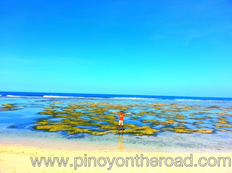 low tides, more fun in the philippines
