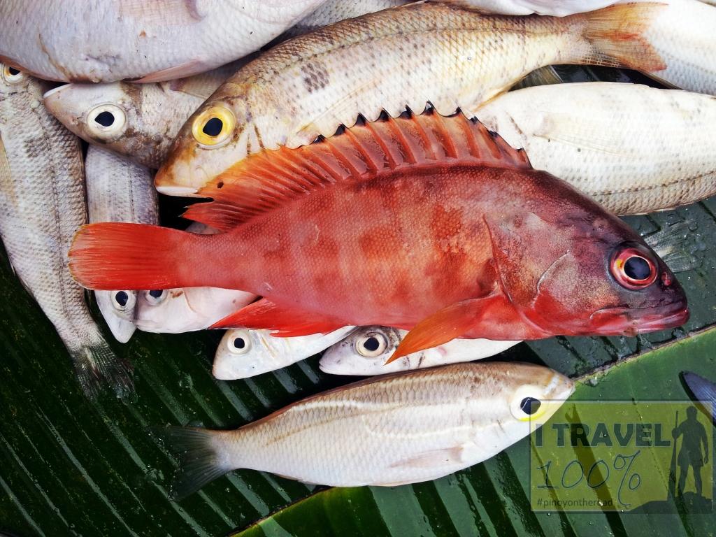 Tawi Tawi   Bongao Fish Market   What to See in Tawi Tawi   Photo Essay