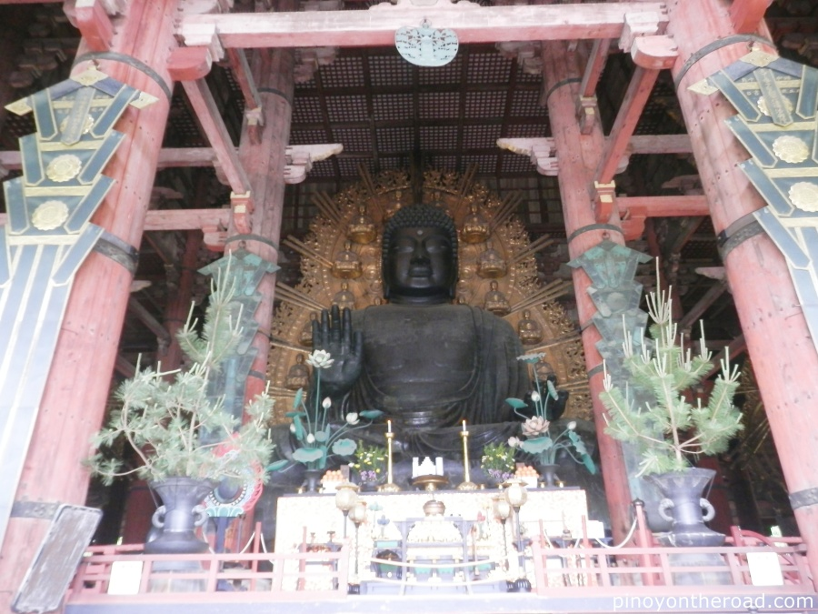 Japan Travel Guide | Part 4 ~ 7 Days 6 Nights Japan Itinerary Visiting Tokyo, Kyoto, Nara, Osaka and Kobe