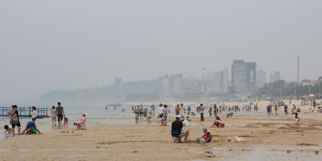 Daecheon Beach (photo frm koreandiaries.wordpress.com)