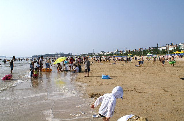 daecheon Beach (photo from www.lifeinkorea.com)