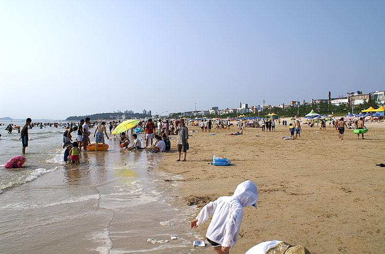 daecheon Beach (photo from www.lifeinkorea.com)